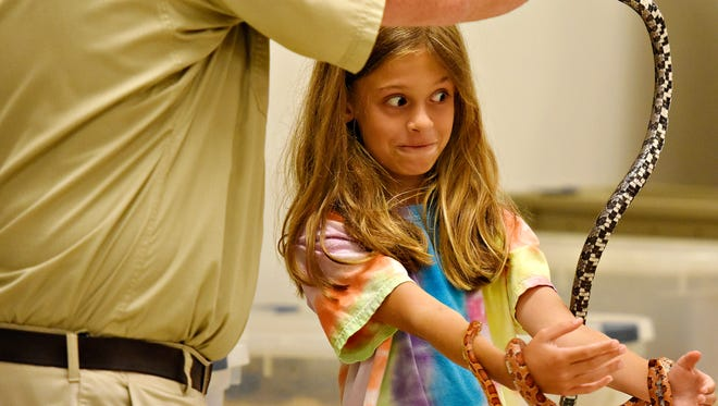 Jesse Rothacker, of Forgotten Friend Reptile Sanctuary based in Lancaster County, works with volunteer Hailey Graff, 9, of North Codorus Township, during a Reptile Week performance at Nixon Park Nature Center at Richard M. Nixon County Park in Springfield Township, Saturday, July 1, 2017. Dawn J. Sagert photo