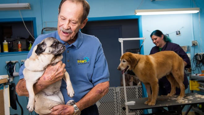 Tom Murray, owner of Villa La PAWS Resort and Spa, holds Rosey the Pug while Stephanie Irvine grooms another dog in Villa La PAWS Resort and Spa in Phoenix. Murray is planning to open a PAWS Mall destination pet shopping center in October.