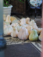 Two dozen pumpkins greet visitors to Mike and Jovi