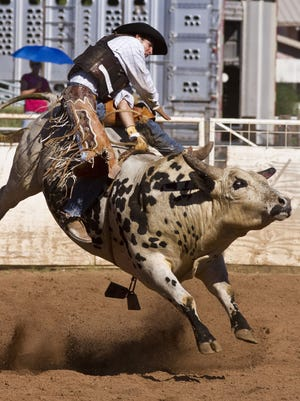 Bull riding at the annual Sonoita Labor Day Rodeo.