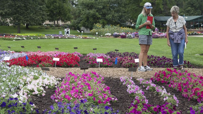 Volunteers from the Denver Botanic Gardens Ann Berthe, left, and Marilyn Schroeder, right, take notes on new and interesting flowers they may purchase from the Annual Flower Trial Garden Thursday, August 4, 2016.