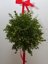Our modern-day mistletoe holiday tradition likely originates