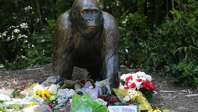 A statue of a gorilla and baby at the entrance to Gorilla World at the Cincinnati Zoo and Botanical Garden has become a memorial for Harambe.