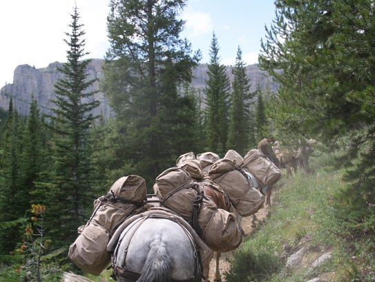 A pack string brings in supplies to camp at the K Bar