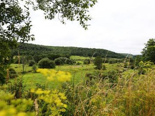 A portion of land in the Town of Barton, near Tyler Hollow Road, sits near the site of the proposed natural gas well. The gas collection will take place beneath a 53-acre plot. This photo was taken in August 2016.