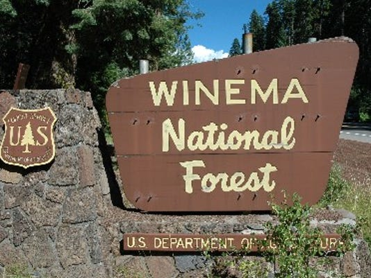 SAL Forest Service jobs