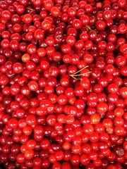 Door County provides about 90 percent of Wisconsin's total cherry crop.