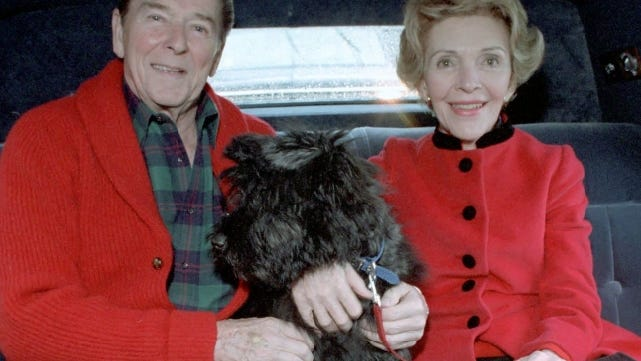 President Ronald Reagan and First Lady Nancy in a limousine with Lucky in 1985.