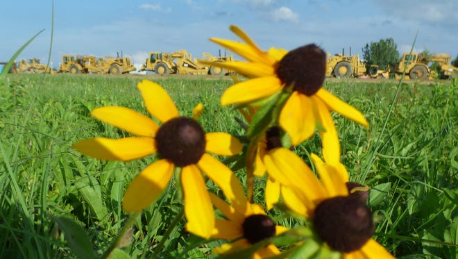 Bulldozers, in the background, will clear this field of wildflowers near Summit Park in Blue Ash.
