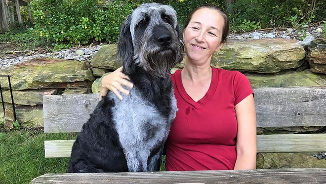 Ozzy, a goldendoodle who is a service dog to Lori Bilyou of Newark, Del., and has been missing since he jumped her fence after a seizure Oct. 8.