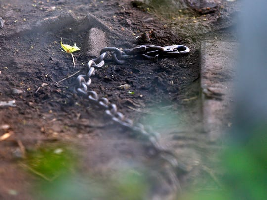 A chain is shown inside one of the dog kennels Wednesday,