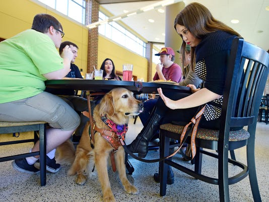 YDR-MC-102717-service-dogs
