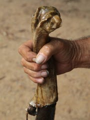 Jim Eslinger holds the handle of one of the canes he made from desert materials in Nipton, Calif., Thursday, August 3, 2017.
