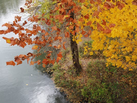 fall.06.JPG.jpg