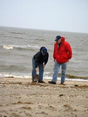 Senators Chris Coons, D-Del. and Sheldon Whitehouse, D-RI, walk the newly restored Fowler Beach. Coons picks up a dead horseshoe crab.