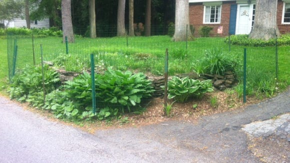 Residents try to protect their gardens from neighborhood critters, with varying degrees of success.