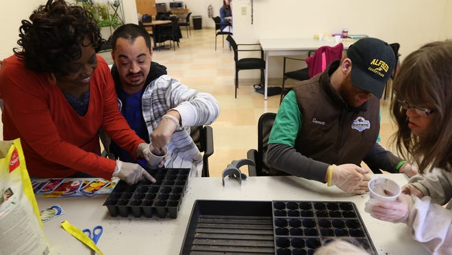 Mary Ann Cooper, community integration assistant at Lifetime Assistance in Gates, works with Jose Echevarria of Rochester, Garrett Cox of Brockport and Carolyn Neatrour of Pittsford on planting flower seeds.  The Lifetime Assistance staff work with people with intellectual and developmental disabilities on wellness, social and job skill building to prepare them for employment.