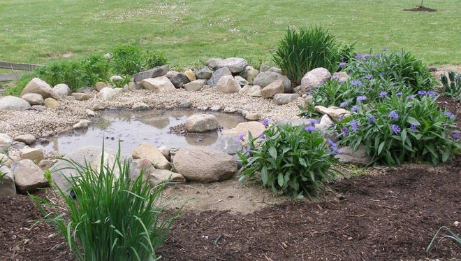 This is apicture of the butterfly garden in 2006, three years after is was established at the Schoolyard Habitat at Wynford's Royal Woods.It is now history.