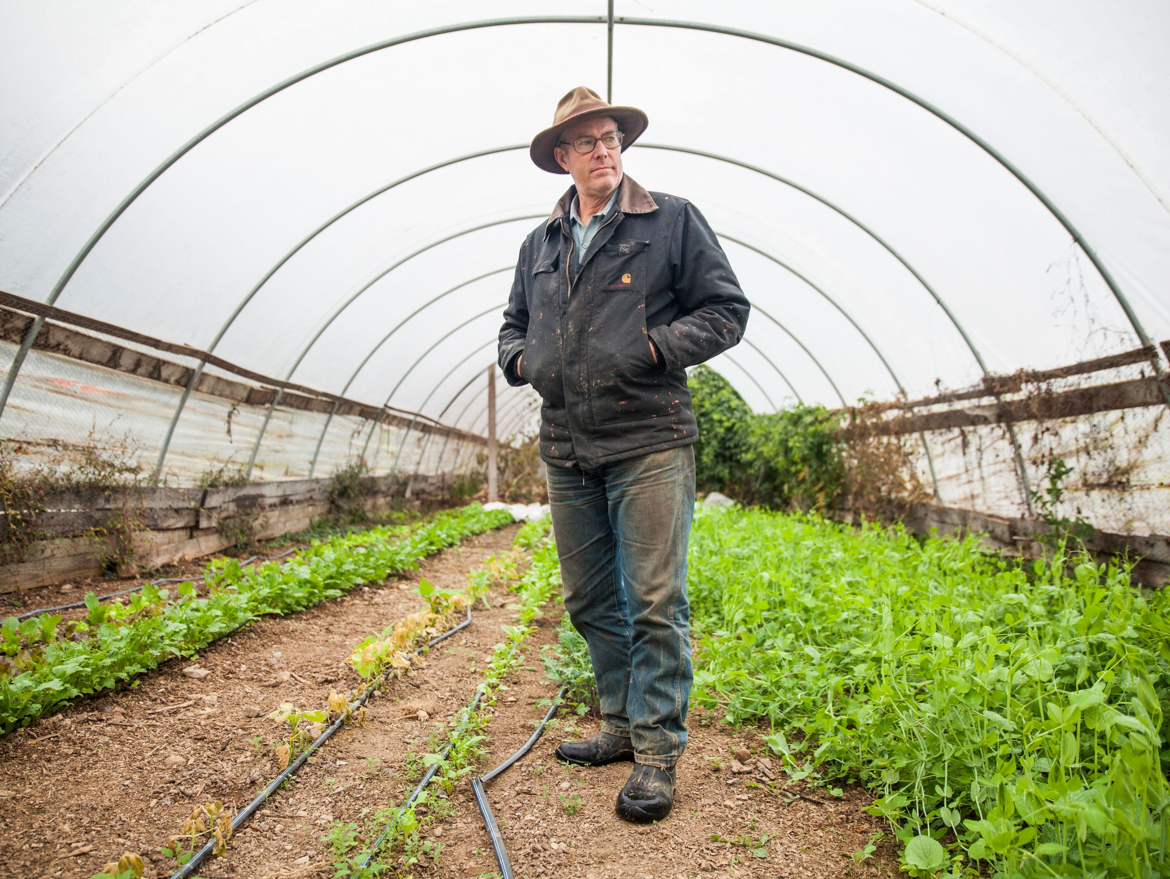 Joel Salatin stands inside a hoop house at Polyface