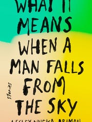 What It Means When A Man Falls From the Sky.  A book