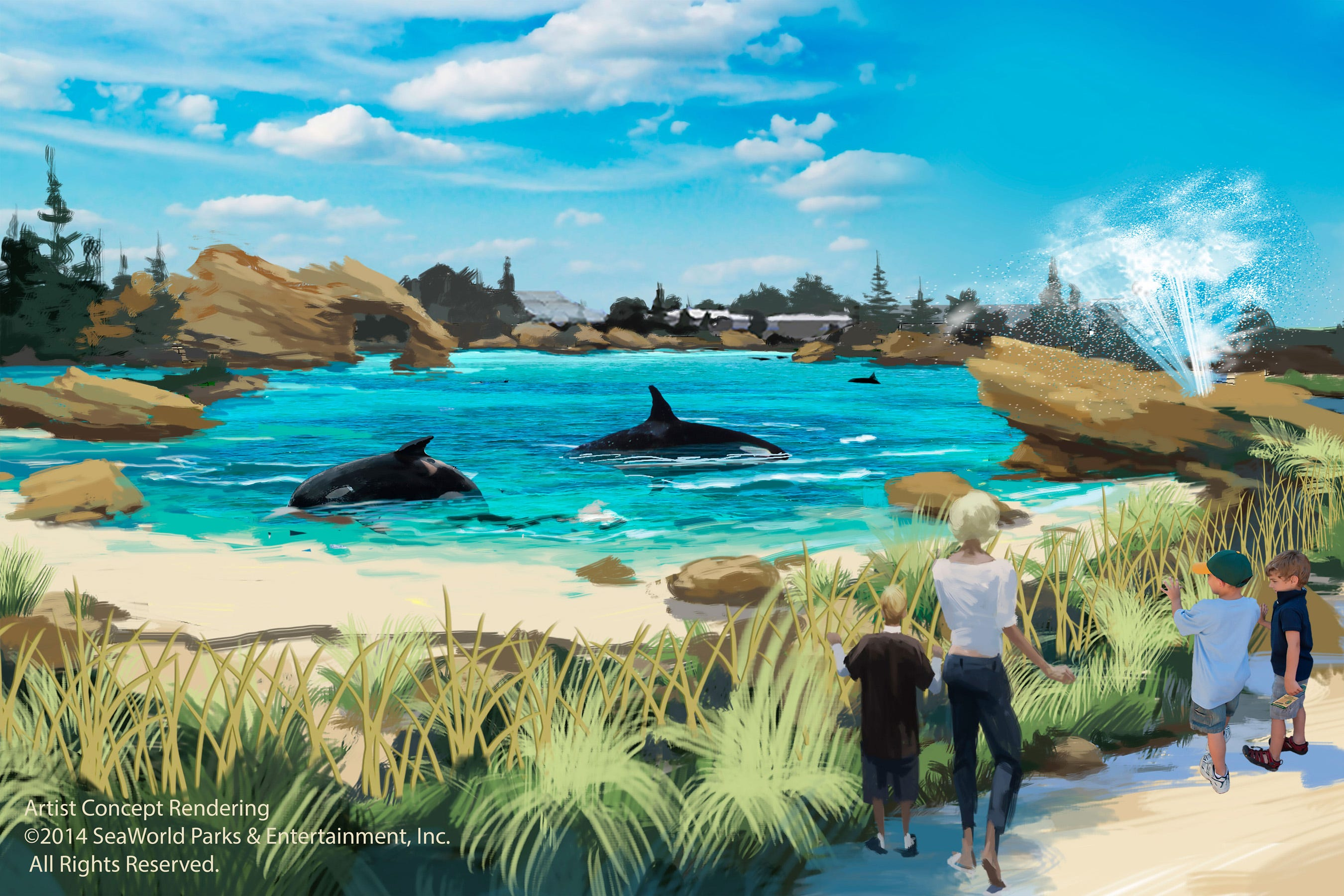 seaworld building huge new homes for killer whales rh azcentral com Luxury Homes in NY Home America