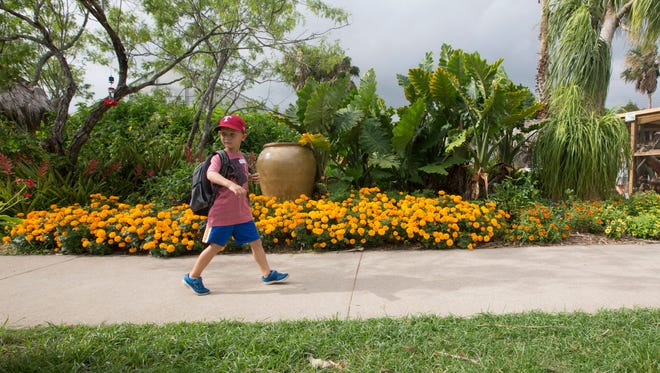 The Coastal Bend will welcome families ready to explore with various activities.