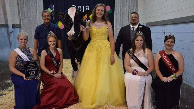The Futurity show is a time to dress your best when showing your Holstein.