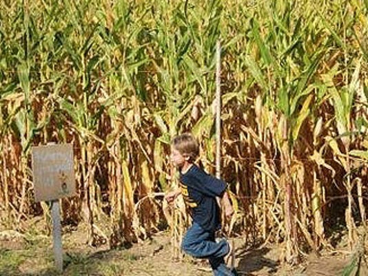 636427063327822203-harvest-days.jpg