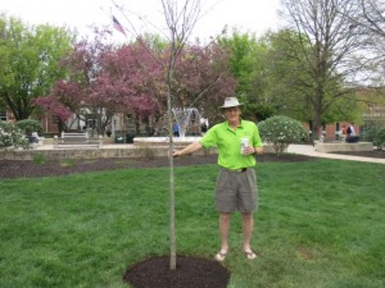 """This red oak is named """"Annette"""" after my granddaughter who was born on Earth Day 2016."""