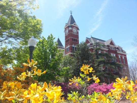 Auburn University's Samford Hall in the spring.