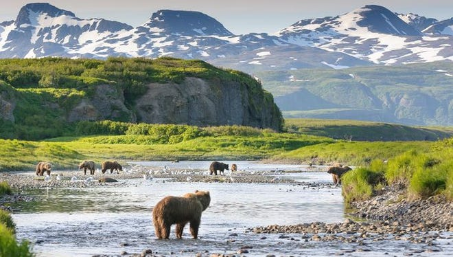 Bears enjoy the scene at Alaska's Katmai National Park.