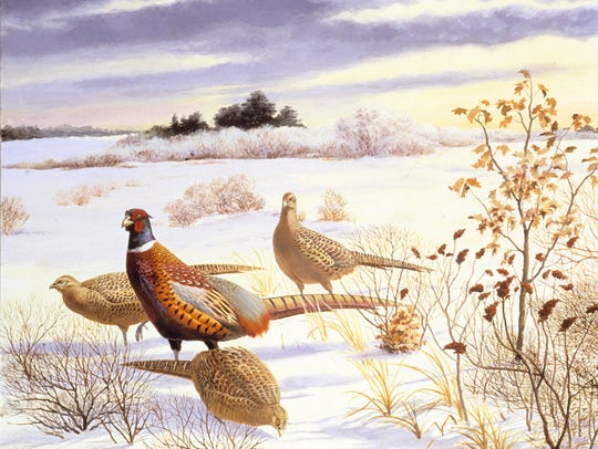 Singer's portrait of pheasants at work.