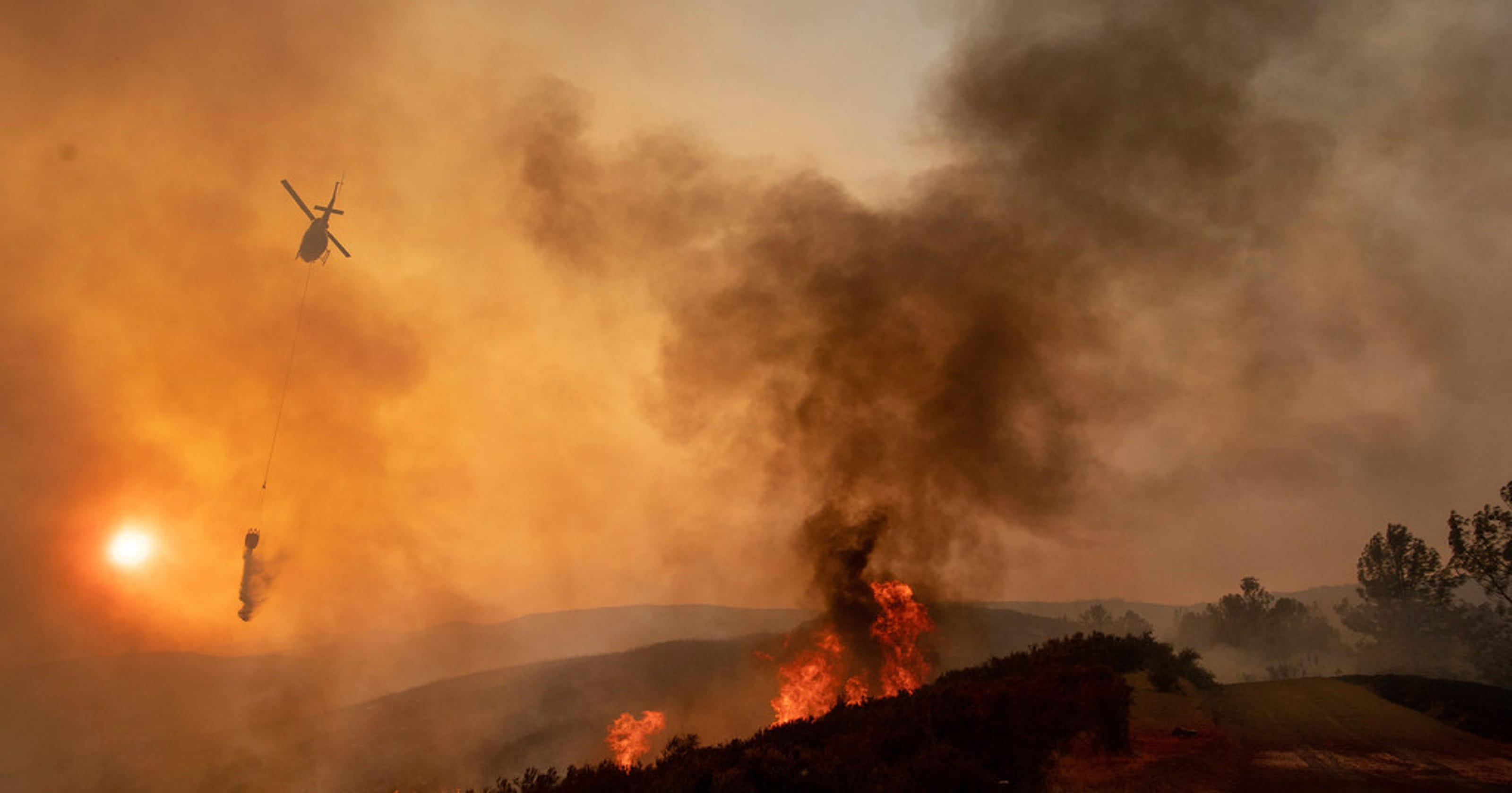 This is why we have wildfires — and what we can do to prevent them