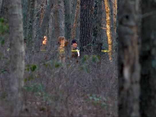Investigators are shown in Colliers Mills Wildlife