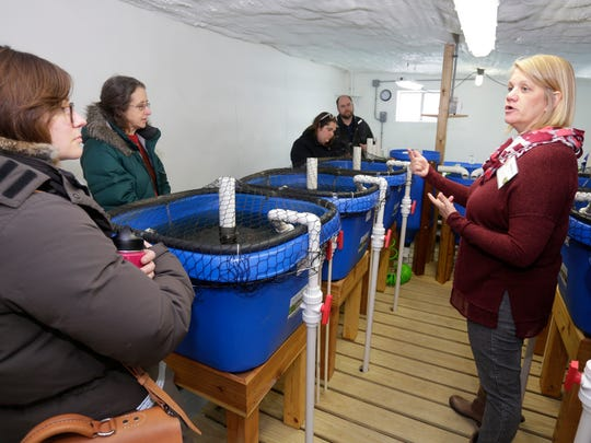 Rebecca Nelson of Montello, right, talks about the process of raising fish during a tour at the Lake Orchard Farm B&B and Aquaponics near Haven.