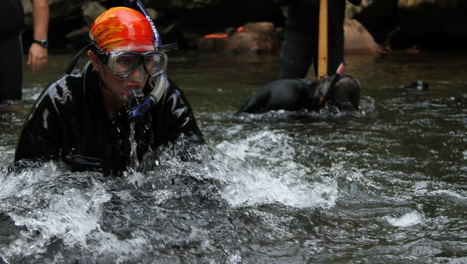 Lori Williams, wildlife diversity biologist with the N.C. Wildlife Resources Commission, snorkels in search of hellbender salamanders in the Cane River in Yancey County.