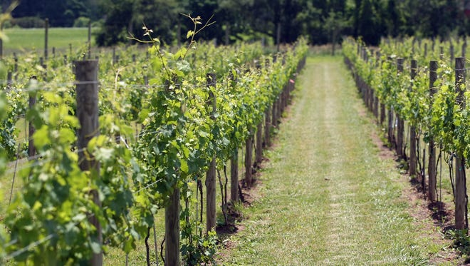 Unionville Vineyards in Ringoes is nestled in the rolling hills of southwestern Hunterdon County.