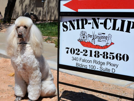 """Snip N Clip"" opened in Mesquite earlier this month."
