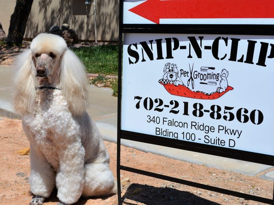 """""""Snip N Clip"""" opened in Mesquite earlier this month."""
