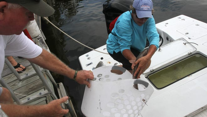 Jean Arnette pulls redfish from a boat during weigh-ins for the Ryan McCleskey Memorial Fishing Tournament on Saturday in Cape Coral.