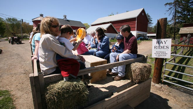 Novice trail rides and hay rides are available at Lord Stirling Stable, 256 S. Maple Ave., in the Basking Ridge section of Bernards.