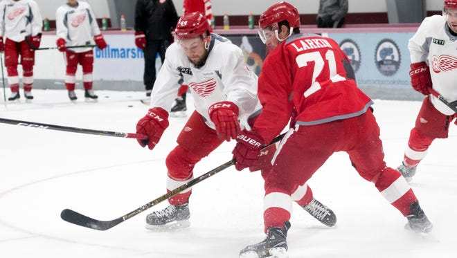 Dylan Sadowy, left, and Dylan Larkin battle for the puck during practice Saturday.
