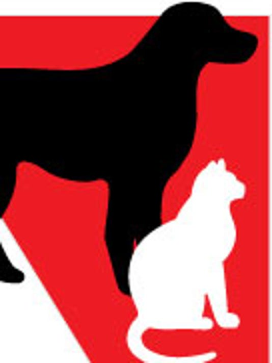 FRM pet projects logo
