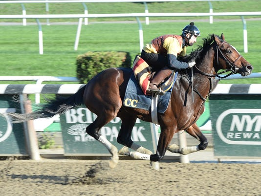 Tonalist 10-25-14 credit Susie Raisher5.jpg
