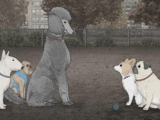 Dog Park With Poke Stops