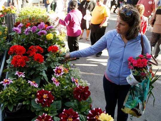 Sarah Puckett of Urbandale looks over the flowers and herbs for sale from the Busy Bee Garden Center Saturday, May 6, 2017 at the Downtown Farmers' Market in Des Moines.