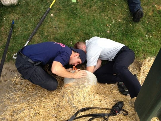 Farmington Hills firefighters work to free a kitten