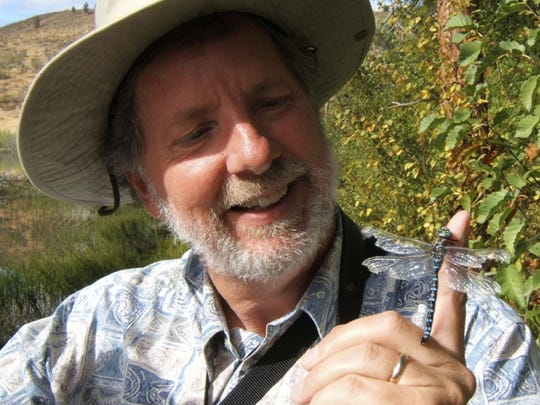 """Dragonfly whisperer"" Jim Walker of Mesa with a paddle-tailed"