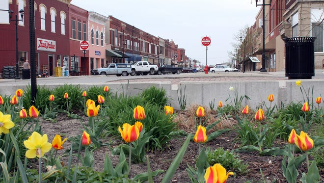 Spring bring tulips to Belle Plaine's Main Street, thanks to Dave Kramer and Belle Plaine's Partners for Beautification.