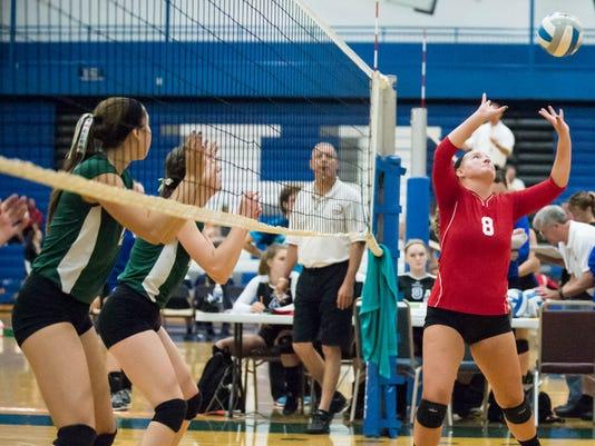 Volleyball CP.jpg